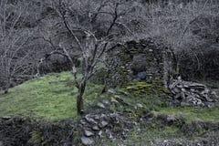 Piodao è un piccolo paesino di montagna molto vecchio, in Arganil, il Portogallo Immagini Stock Libere da Diritti