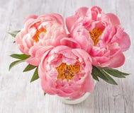 Pioenbloemen Royalty-vrije Stock Afbeeldingen