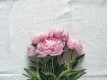 Pioenboeket op wit tafelkleed Stock Foto