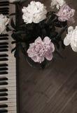 Pioenen en piano Royalty-vrije Stock Afbeelding