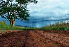 Pioggia alla fine della strada Fotografia Stock