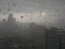 Pioggia (in bianco e nero) Fotografie Stock