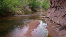 Pioggia in canyon dell'arenaria con una corrente stock footage
