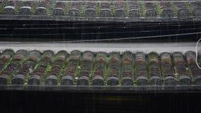 Pioggia che cade sulla casa del tetto stock footage