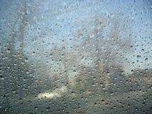 Pioggia congelata Fotografie Stock
