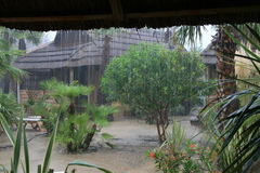 Pioggia del Sumatra Fotografia Stock