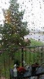 Pioggia dell'Arizona Fotografia Stock Libera da Diritti