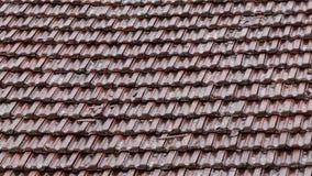 Pioggia di estate che cade sulle mattonelle di tetto dell'argilla rossa archivi video