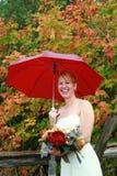 Pioggia di giorno delle nozze Fotografia Stock