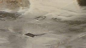 Pioggia di versamento su asfalto con acqua che sfocia in scolo archivi video