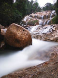 Pioggia Forest Waterfall Fotografia Stock Libera da Diritti