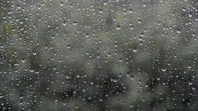 Pioggia fuori della finestra stock footage