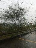 Pioggia fuori della mia finestra Fotografie Stock Libere da Diritti