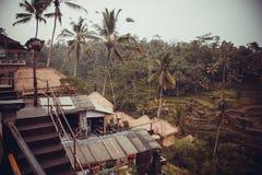 Pioggia in giungla indonesiana Fotografia Stock