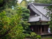 Pioggia nel parco di Kyoto con la casa Fotografie Stock Libere da Diritti