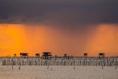 Pioggia nella sera fotografia stock libera da diritti