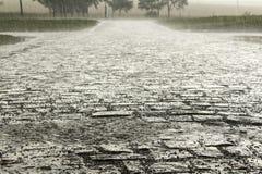Pioggia persistente immagini stock