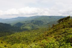 Pioggia più forrest in Costa Rica, America Centrale immagini stock libere da diritti