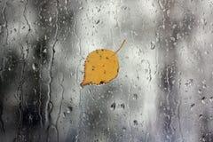 Pioggia sulla finestra con il foglio Immagini Stock