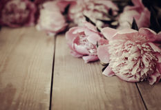 Pion flowers on vintage wooden background Royalty Free Stock Images
