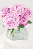 Pion och rosor Royaltyfri Foto