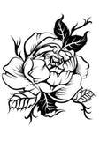 pionblomma i tattostil stock illustrationer