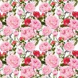 Pionblommor och röda rosor blom- seamless för bakgrund vattenfärg Royaltyfria Foton