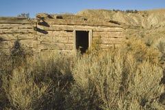 Pioneer Cabin. Historic pioneer cabin in western Colorado hidden in sage brush Royalty Free Stock Photography