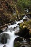 Pioneer Creek Stock Photo