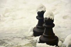 Pionek na śniegu Zdjęcie Royalty Free
