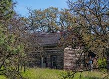 Pionierkabine im Wald Lizenzfreies Stockbild