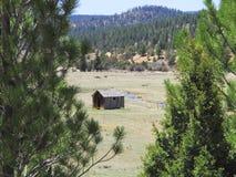 Pioniershuis door een Stroom in een Groene Weide in het Amerikaanse Westen royalty-vrije stock fotografie