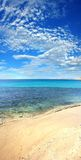 pionowe na plaży fotografia royalty free