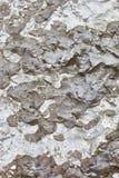 Pionowo betonowa tekstura z czarną farbą Tło ilustracji