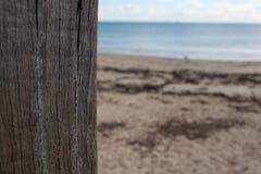 Pionowo drewniana poczta z drewno adrą przeciw z ostrości zamazywał plażowego i dennego tło obraz royalty free