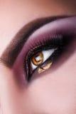Pionowo fotografia kobiety brązu oko patrzeje daleko od w studiu Makro- Obrazy Stock