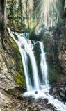 Pionowo panorama wspaniała siklawa w bujny zieleni drewnach zdjęcie royalty free