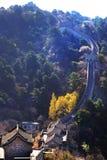 Pionowo panoramiczny widok Mutianyu sekcja wielki mur Chiny, otaczający zieloną i żółtą roślinnością zdjęcia royalty free
