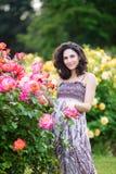 Pionowo portret młoda atrakcyjna Kaukaska kobieta z ciemnego brązu kędzierzawego włosy róż pobliskim różowym krzakiem obrazy royalty free