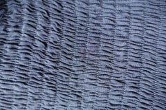 Pionowo rzędy gromadzenia się na błękitnej tkaninie Zdjęcie Royalty Free
