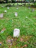 Pionowo skład grobowowie na trawie zdjęcia stock