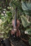 Pionowo Skrzypcowy klasyczny instrument z Naturalnym t?em fotografia royalty free