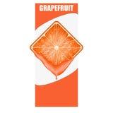 Pionowo sztandar grapefruitowy kwadratowy plasterek przestrzeń Obrazy Royalty Free