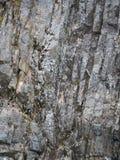 Pionowo warstwy skała z mech fotografia royalty free