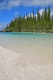 Pionowo widok Naturalny basen z ogromnym obrzarem świetny biały piasek, błękitne wody & wstępujące sosny, Obraz Stock