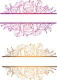 Pionram, blommateckning och att skissa med linje-konst p? vita bakgrunder royaltyfri foto