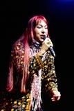 piosenkarz Zdjęcie Royalty Free
