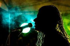 piosenkarz Zdjęcia Royalty Free
