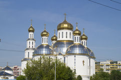 Piously - the Voskresensky orthodox temple. Brest. Belarus Stock Photography