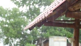 Piova la caduta dal tetto, goccia di acqua, piovente il fondo video d archivio